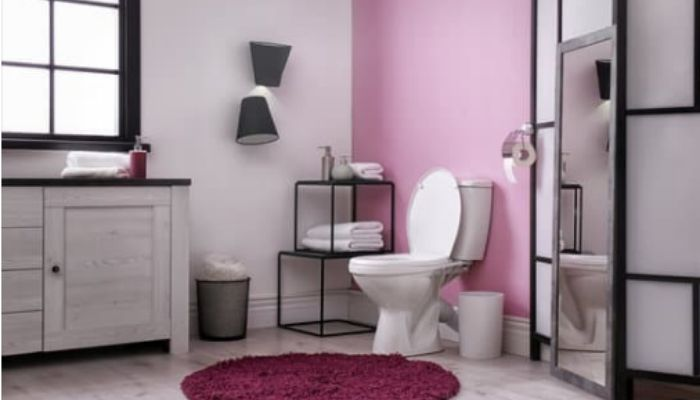 Как избавиться от засора в туалете