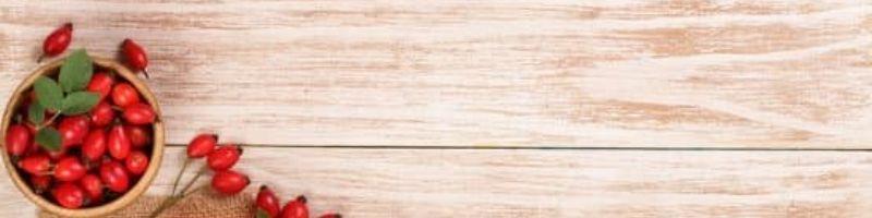 Шиповник: полезные свойства и противопоказания